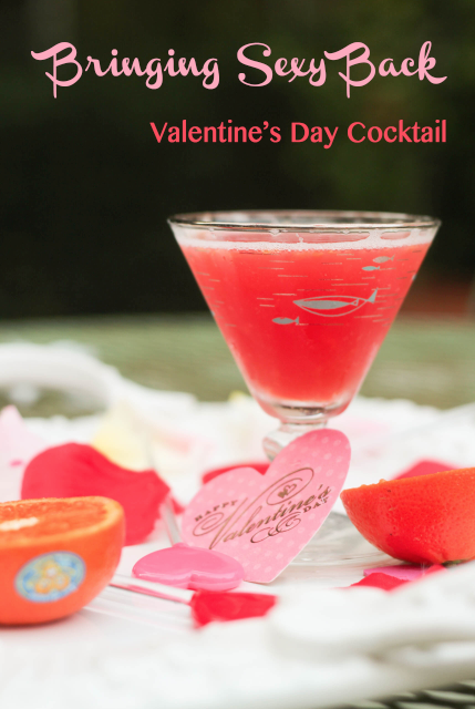 Valentines Day Party Invitations  Iras Peripheral Visions